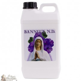bottle water Banneux N.D - 2 L