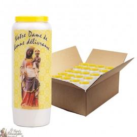 Jungfrau Maria Novene Kerzen von guter Qualität - 20 Stück
