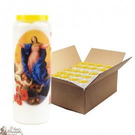 Novena candles the Lady of the Assumption - 20 pieces