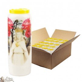 Virgin Novena candles marries Roses - 20 pieces
