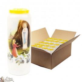 Bougies de Neuvaine Vierge marie de Lourdes - 20 pièces