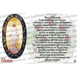 Postcard Our Lady of Pellevoisin prayer - magnetic