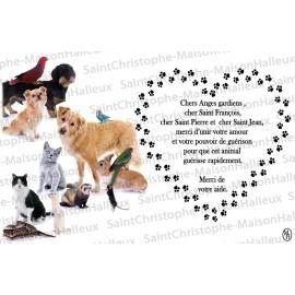 Carte postale Animaux prière - aimantée