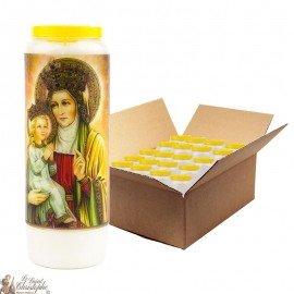 Sainte Anne Novena Candles - 20 pieces