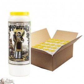 Saint Vincent Novena Candles - 20 pieces