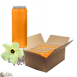Bougies de neuvaine parfumée au Musc - carton 20 pièces