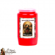 Votive candle, red or white pilot light 2 days and a half