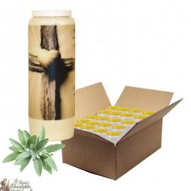 Bougie de neuvaine pour défunt parfum sauge - Croix - carton 20 pièces