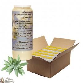Bougie de neuvaine pour défunt parfum sauge - Fleurs - carton 20 pièces