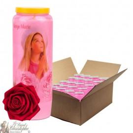 Bougies de Neuvaine Vierge Marie parfumée à la rose - 1 - 20 pièces