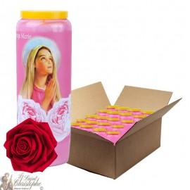 Bougies de Neuvaine Vierge Marie parfumée à la rose - 2 - 20 pièces