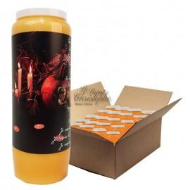 Bougies de neuvaine orange Halloween Samhain citrouilles - carton 20 pcs