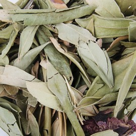Sauge naturel feuilles - 10 gr